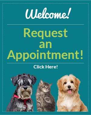 Welcome! Request an appointment! Click Here!